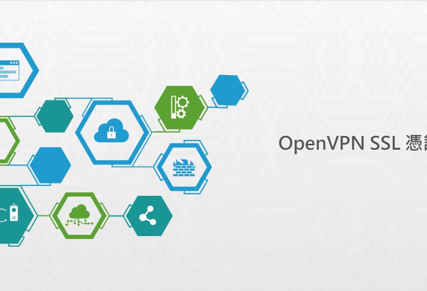 SSL OpenVPN